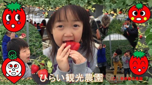 平井観光農園
